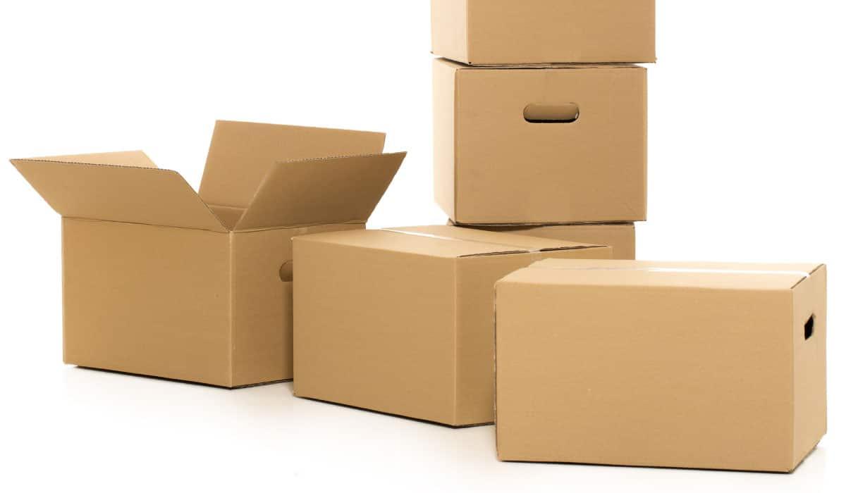 cajas de catón